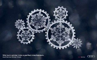 audi-winter-check-1723-Zoom.jpg